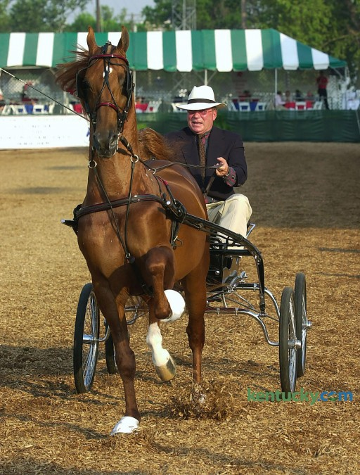Actor William Shatner drives Revival to victory in the Fine Harness Amateur, Gentleman to Drive class, on the opening night of the 66th Annual Lexington Junior League Horse Show held at the Red Mile in  Lexington Monday, July 8, 2002. This years horse show begins Monday, July 7 and concludes Saturday.