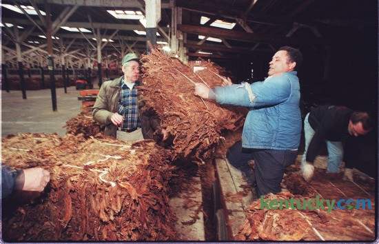 Lexington farmer James W. Taylor, center, lifted a tobacco bale off his flatbed truck while unloading at the Golden Burley Tobacco Warehouse, 574 Angliana Ave. Jan. 2, 1997. At left is Don Columbia and at right is Gilbert Brothers, both warehouse employees. Taylor raised 15 acres, but said his total yield will be about 20,000 pounds short due to drought, blue mold and black shank. David Perry, Herald-Leader staff