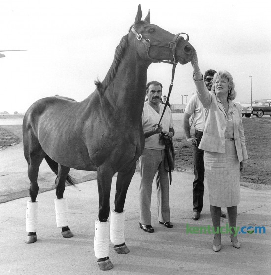"""Kentucky Governor Martha Layne Collins gives John Henry a rub on the head after the famous Thoroughbred race horse arrived in Lexington Aug. 26, 1985 at Blue Grass Field, now called Blue Grass Airport. The two-time Eclipse Horse of the Year winner was coming home to Lexington for his retirement at the Kentucky Horse Park. John Henry, a 10-year old gelding at the time of his retirement, was  taken to the Horse Park where waiting there was a shiny, new stall made of oak and brass in a barn named aptly enough """"The Hall of Champions."""" John Henry, the oldest horse to win a Grade 1 race - at age 9 - lived out his retirement for 22 years at the Horse Park. He was burried in front of the Hall of Champions at a spot in front of his paddock. Photo by Frank Anderson   Staff"""