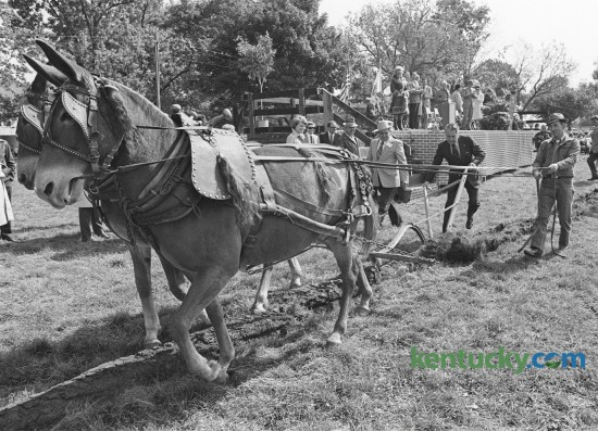 Kentucky Governor Wendell Ford used a breaking plow to turn the turf to officially start construction at the ground breaking for the  Kentucky State Horse Park October 4, 1974 on Iron Works Pike in Fayette  County. Photo by Frank Anderson | Staff