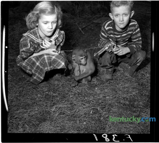 Mary Jo and Robert Dale Feeback, who lived near Millersburg, posed for a photo with their pet monkey in February 1951. Herald-Leader Archive Photo