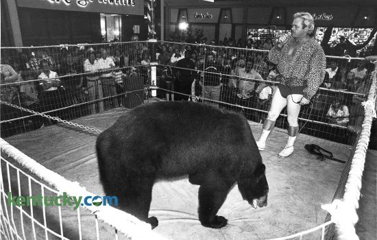 """Victor the wrestling Bear took on all commers during Fayette Mall's ninth anniversary celebration in September 1980. Victor, stood 6'9"""" tall and weighed around 650 pounds. Anyone over the age of 18 could wrestle Victor. Photo by Ron Garrison 